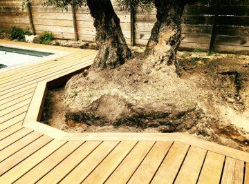 terrasse bois en exotique